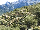 Hidden valleys in Mallorca